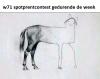 Horse meme.png